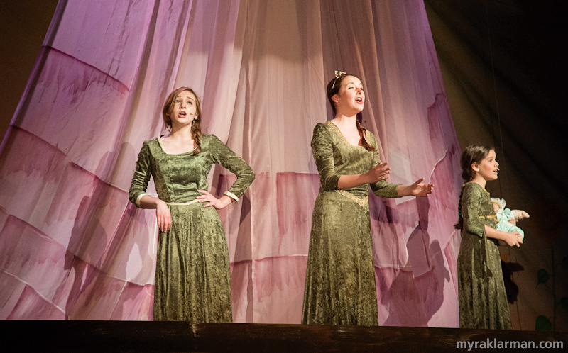 Shrek TheMusical | (l-r) Princess Fiona as a teenager (Alexa Zielinski), as a woman (Hannah Hasseltine), and as a young girl (Dana Steiner).