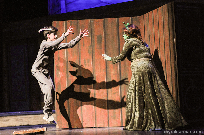 Shrek The Musical | Donkey (Isaac Scobey-Thal) discovers Fiona in her ogress form (Karina Stribley). And how perfect is Donkey's shadow?