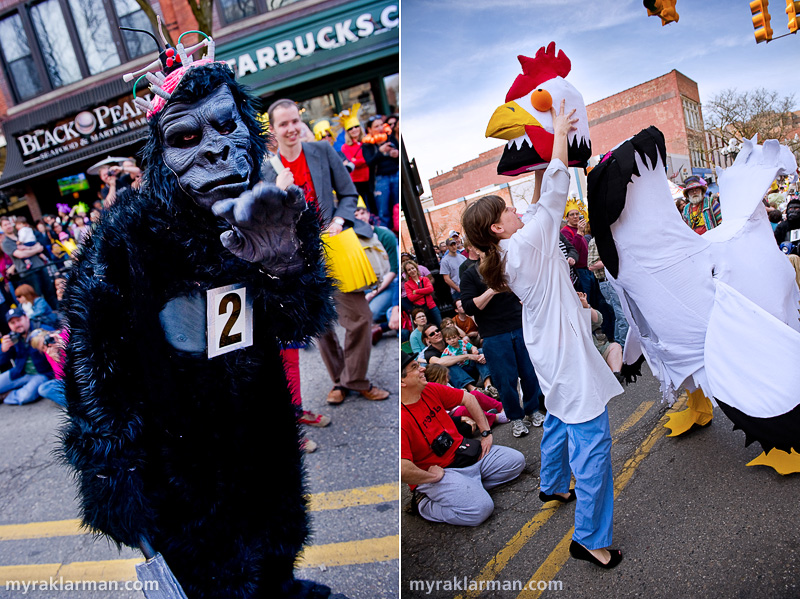 FestiFools 2010 | Watch out for Gorilla #2. He/she looks none too remorseful after viciously chopping off the head of a defenseless chicken.